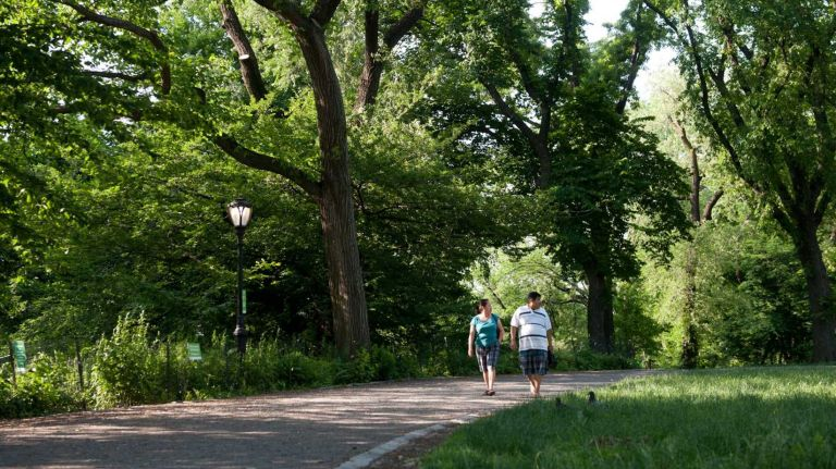City parks' new rules attempt to reduce the number of misdemeanor summonses.
