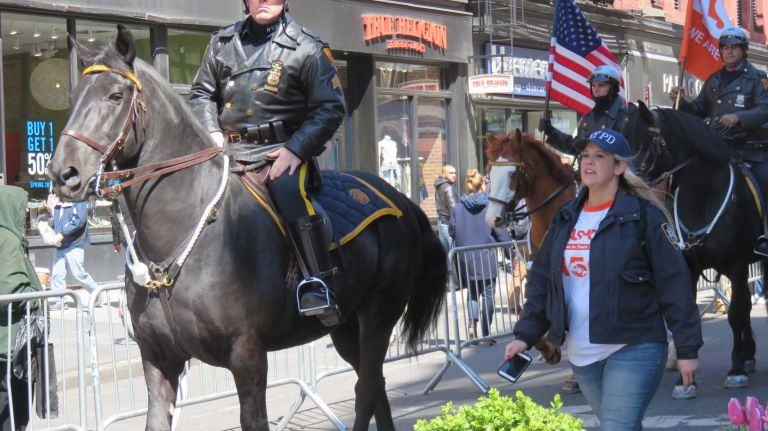A police horse leads the first NYC Paws Parade and Adoptapalooza, organized by the ASPCA and the Mayor's Alliance for NYC's Animals, on April 10, 2016.