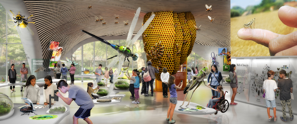 The Insectarium planned for the first floor. | RALPH APPELBAUM ASSOCIATES